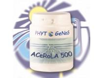 ACéRoLa 500